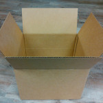 Quail egg shipping box 252 or 504 egg capacity